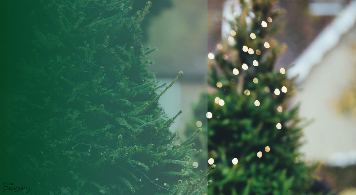 Villa-Gorsky-swięta-Bozego-Narodzenia