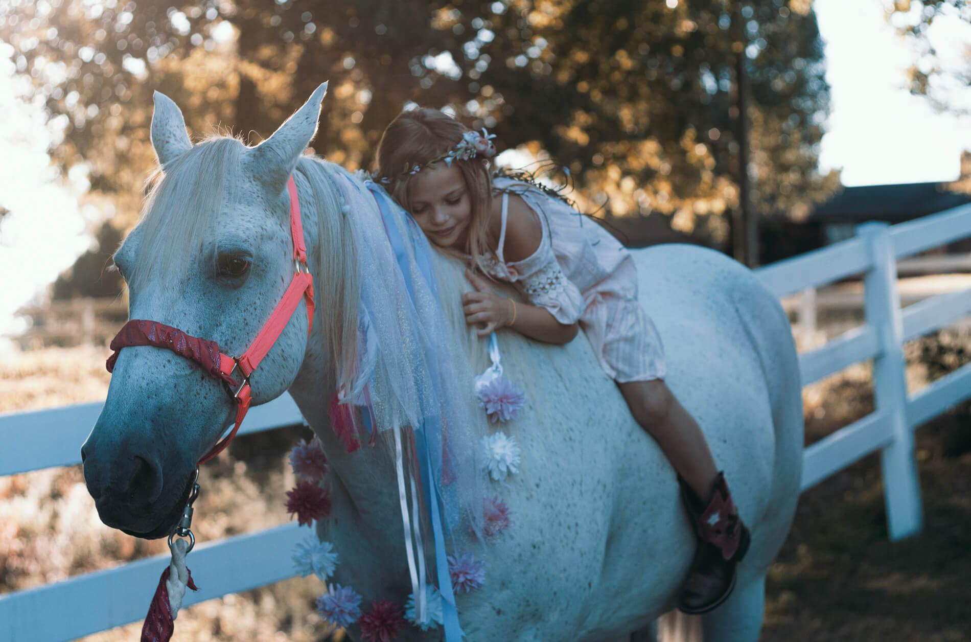 Konie_kursy